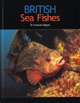 British Sea Fishes