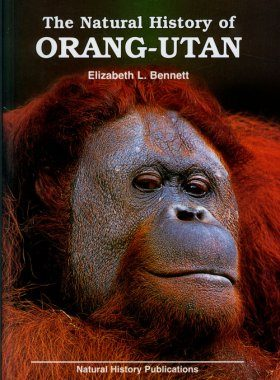 The Natural History of Orang-utan