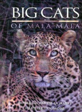 Big Cats of Mala Mala