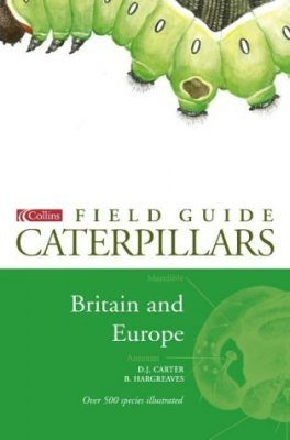 Collins Field Guide to Caterpillars of Britain and Europe