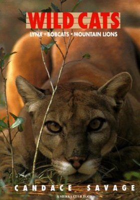 Wild Cats: Lynx, Bobcats and Mountain Lions