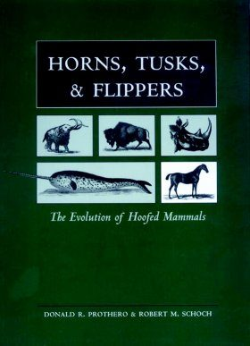 Horns, Tusks, & Flippers