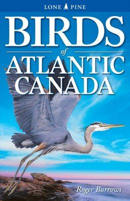 Birds of Atlantic Canada