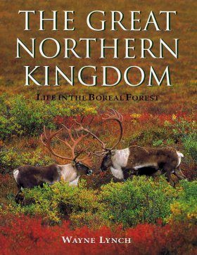 The Great Northern Kingdom