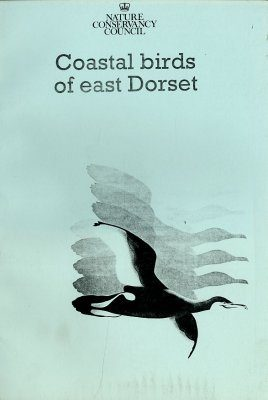 Coastal Birds of East Dorset