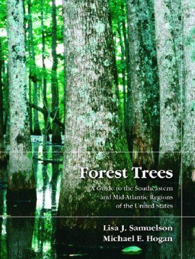 Forest Trees: Guide to the Southeast and Mid Atlantic Regions of the United States