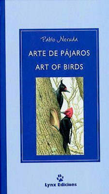 Art of Birds / Arte de Pájaros