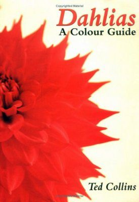 Dahlias - a Colour Guide