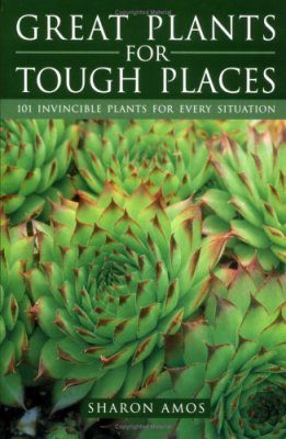 Great Plants for Tough Places