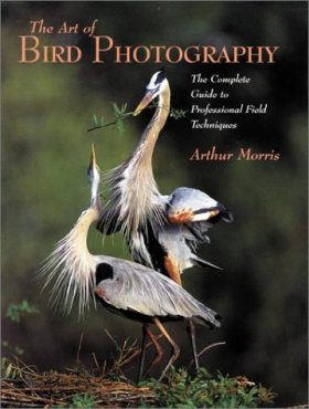 The Art of Bird Photography