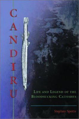 Candiru: Life and Legend of the Bloodsucking Catfishes