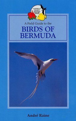 Field Guide to the Birds of Bermuda