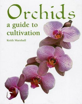 Orchids: A Guide to Cultivation