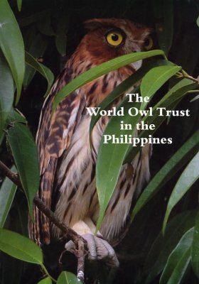 The World Owl Trust in the Philippines