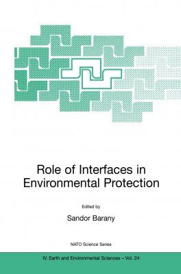 Role of Interfaces in Environmental Protection