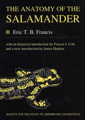 The Anatomy of the Salamander