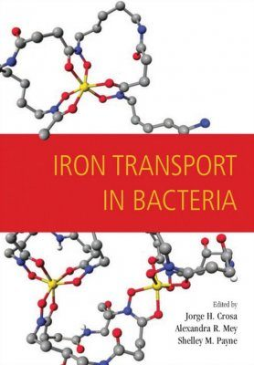 Iron Transport in Bacteria