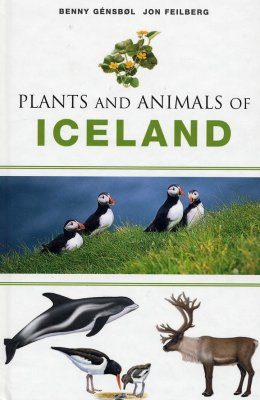 Plants and Animals of Iceland