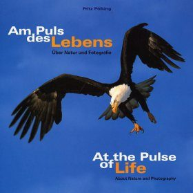 At the Pulse of Life / Am Puls des Lebens