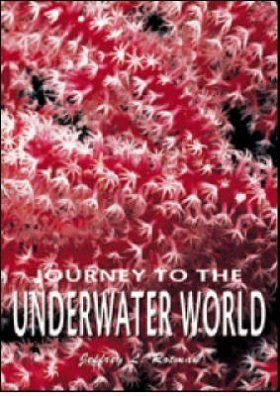 Journey to the Underwater World