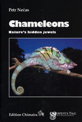 Chameleons: Nature's Hidden Jewels
