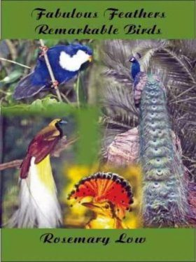 Fabulous Feathers, Remarkable Birds