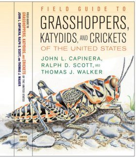 Field Guide to Grasshoppers, Katydids and Crickets of the United States