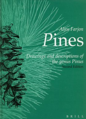 Pines: Drawings and Descriptions of the Genus Pinus