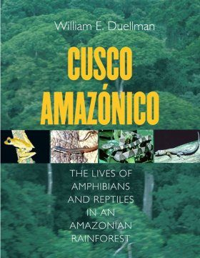 Cusco Amazónico [English]