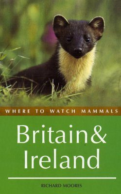 Where to Watch Mammals in Britain and Ireland
