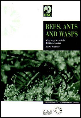 Bees, Ants and Wasps