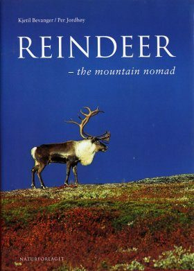 Reindeer: The Mountain Nomad