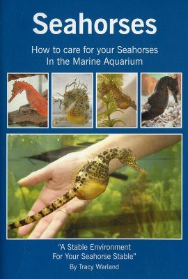 Seahorses: How to Care For Your Seahorses in the Marine Aquarium