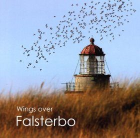 Wings Over Falsterbo