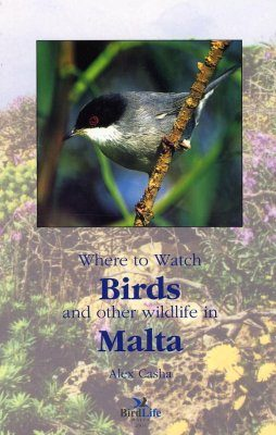 Where to Watch Birds and Other Wildlife in Malta