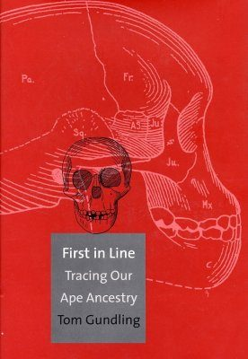 First in Line: Tracing Our Ape Ancestry