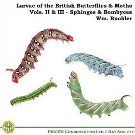 Larvae of the British Butterflies & Moths: Volumes 2 & 3