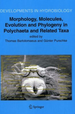 Morphology, Molecules, Evolution and Phylogeny in Polychaeta and Related Taxa
