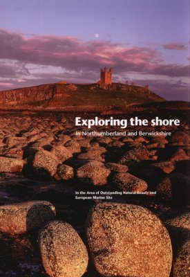 Exploring the Shore in Northumberland and Berwickshire