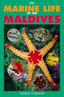 Marine Life of the Maldives