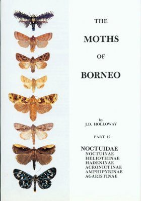 The Moths of Borneo, Part 12