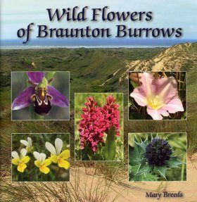 Wild Flowers of Braunton Burrows