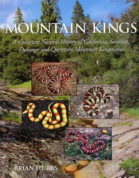 Mountain Kings: A Collective Natural History of California, Sonoran, Durango and Queretaro Mountain Kingsnakes
