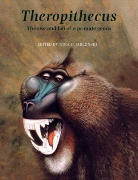 Theropithecus: The Rise and Fall of a Primate Genus