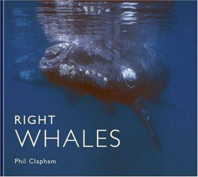 Right Whales: Natural History and Conservation