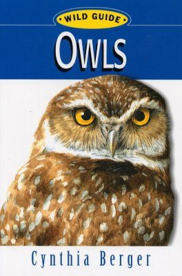 Wild Guide: Owls