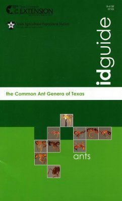 The Common Ant Genera of Texas