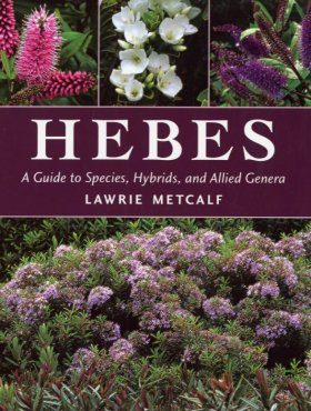 Hebes: A Guide to Species, Hybrids & Allied Genera