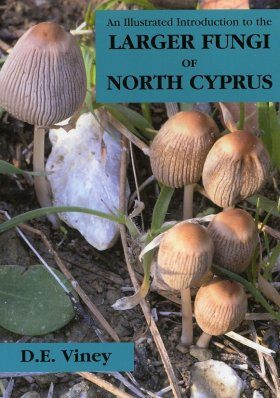 An Illustrated Introduction to the Larger Fungi of North Cyprus