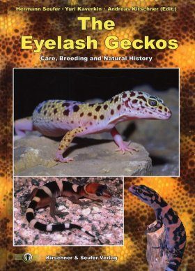 The Eyelash Geckos